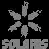 Solaris LDT